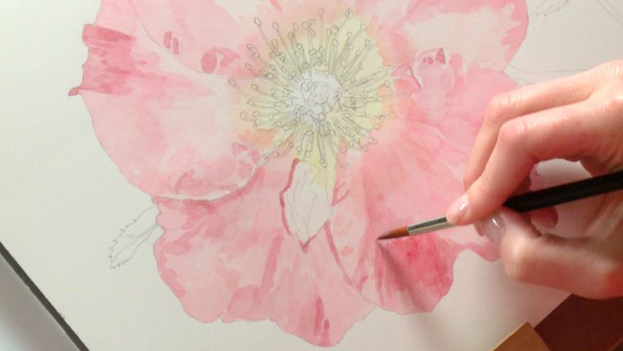 Painting the Petals