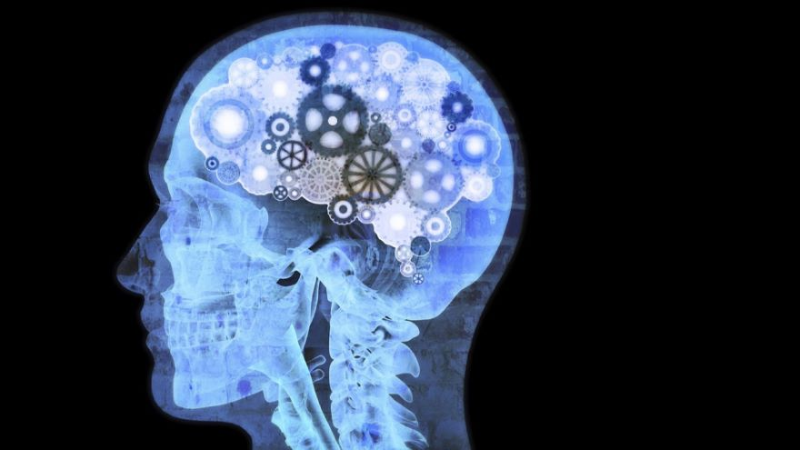 How Does the Brain Produce the Mind?