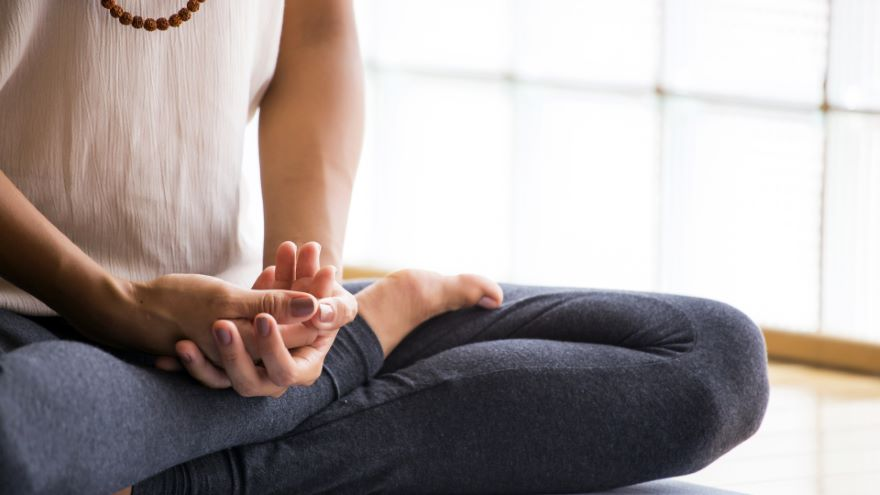 Just Sitting and Working with Kōans – Meditation Checkup: Walking Meditation