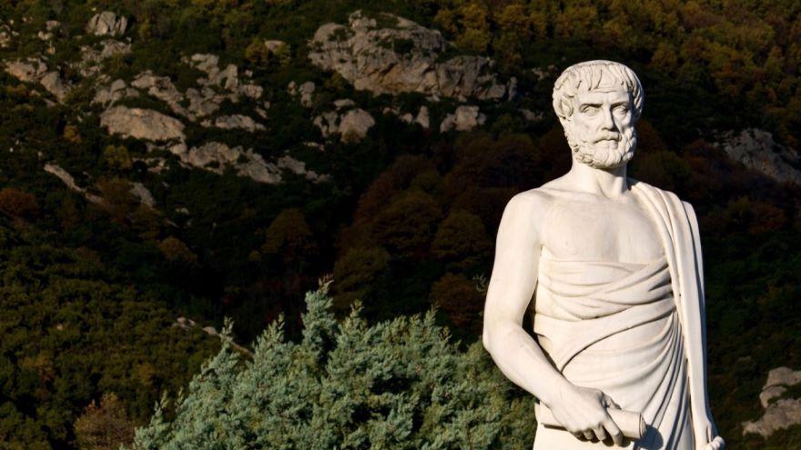 Thinking like Aristotle