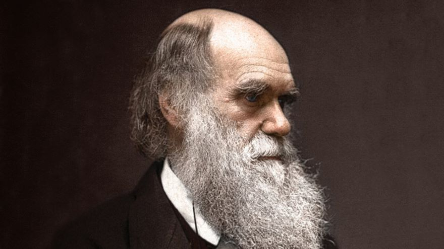 Darwin and Responses to Evolution