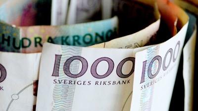 Sweden's Mixed Economy Model
