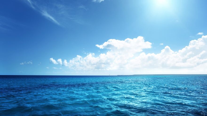 Your Competitive Advantage-Find the Blue Ocean