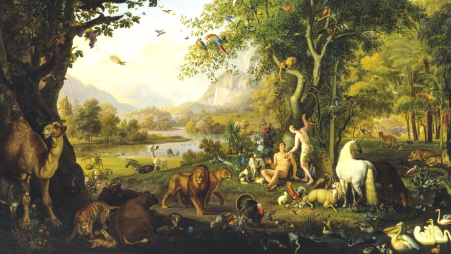 What God Intended for Adam and Eve