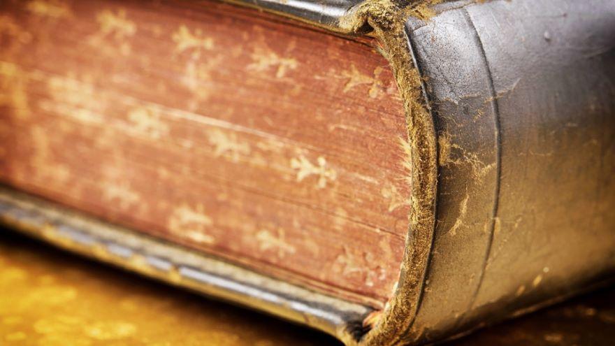 Interlude-Wisdom Psalms on Perseverance
