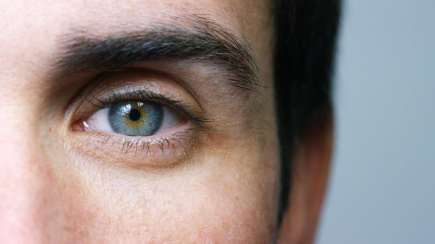 Sensing and Perceiving: How You See