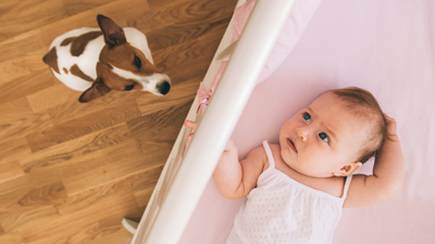 How Do I Introduce My New Baby to My Dog?