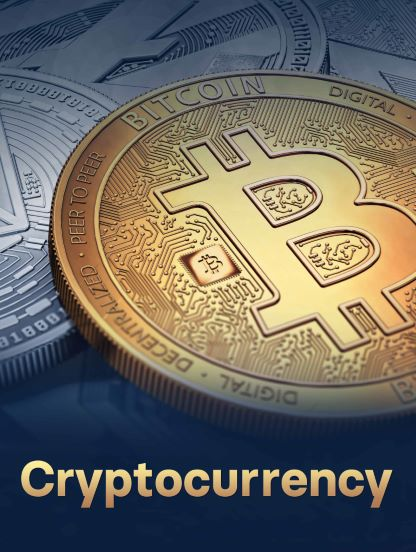 The Cryptocurrency Craze