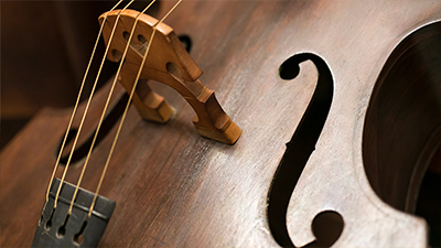 The Classical String Quartet and the Classical Symphony