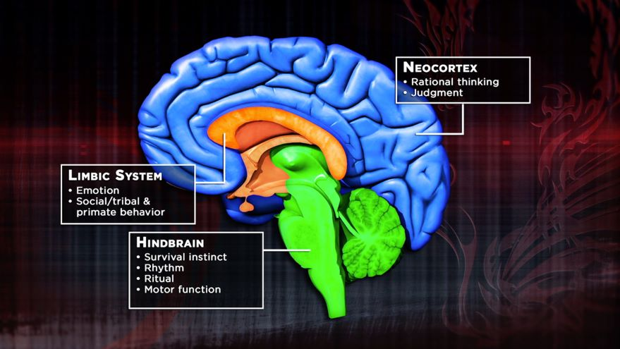 De-escalating Your Monkey Brain
