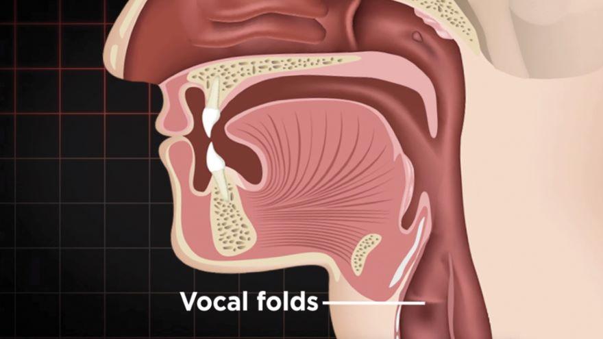 Resonance: Exploring Vocal Colors