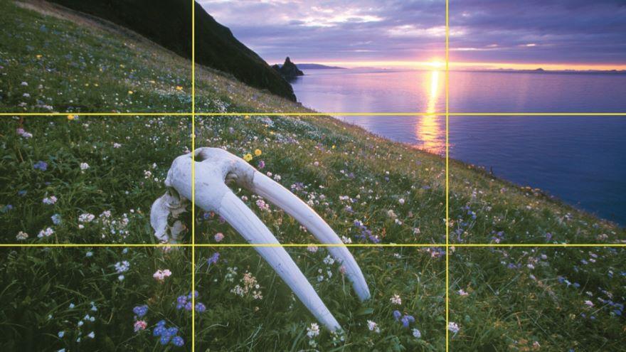 Four Kinds of Light in Landscapes