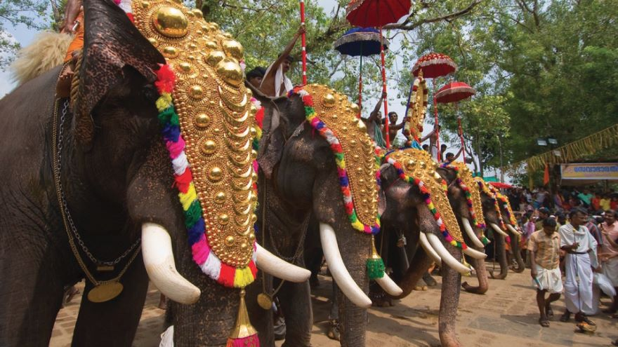 Festivals, Parades, and Special Events