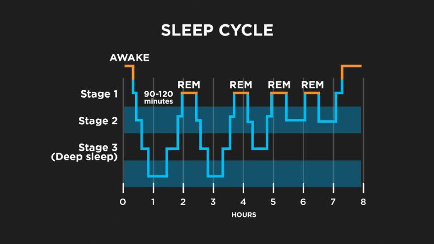 Sleep: Getting a Happy Night's Rest