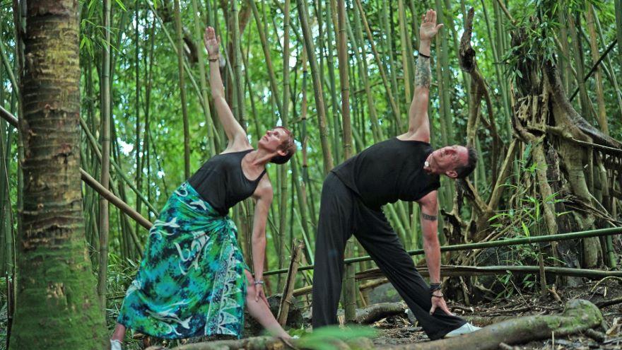Tai Chi Fusion: Bamboo