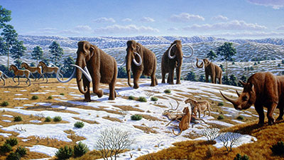 Change in the Paleolithic Era