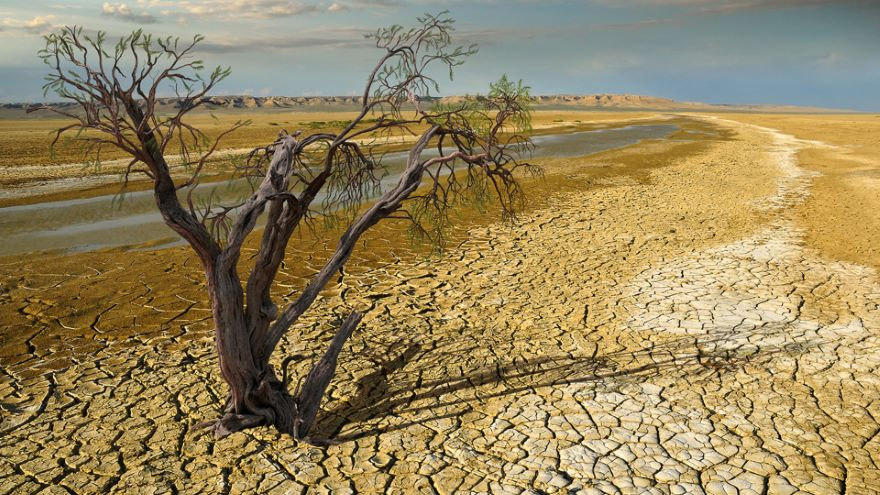 Civilization, the Biosphere, and Tomorrow