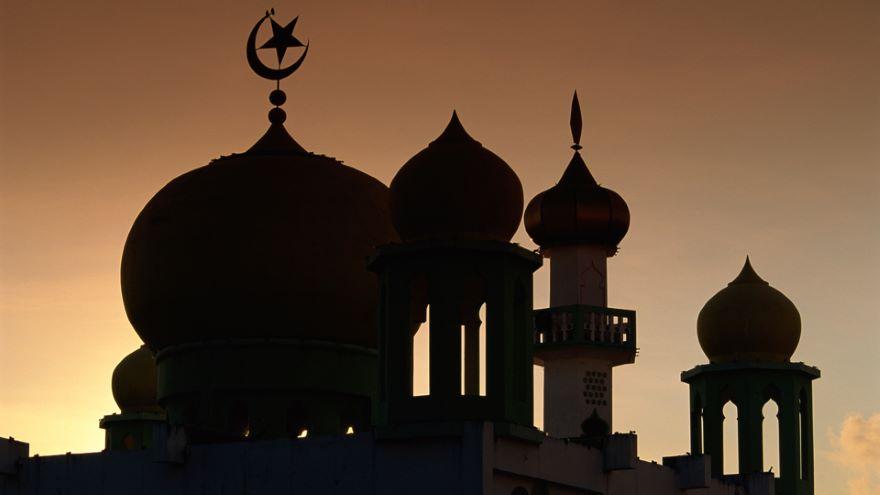 Indian Muslim Politics between the Wars