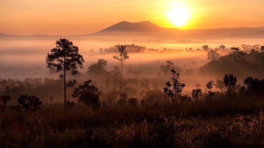 Africa's Many Natural Environments
