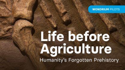 Wondrium Pilots: Life before Agriculture: Humanity's Forgotten Prehistory