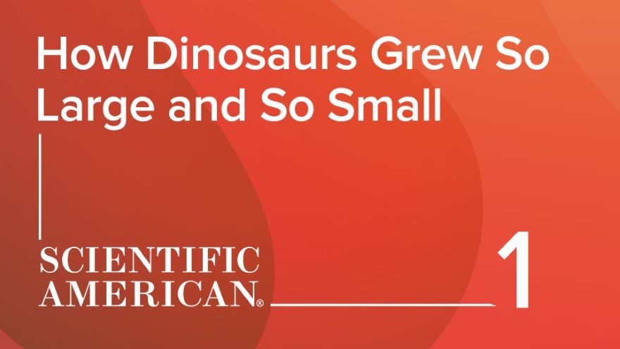 How Dinosaurs Grew So Large and So Small
