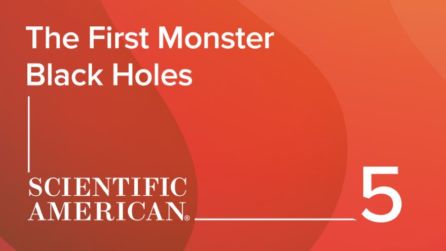 The First Monster Black Holes