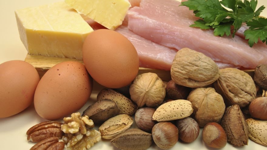 Protein-Understanding Your Choices