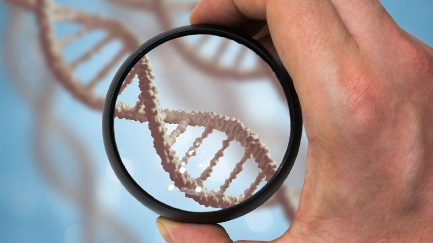 Genetics and the Media