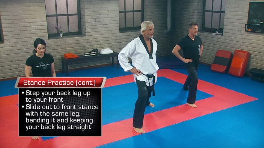 Tae Kwon Do: Seeking Perfection of Form