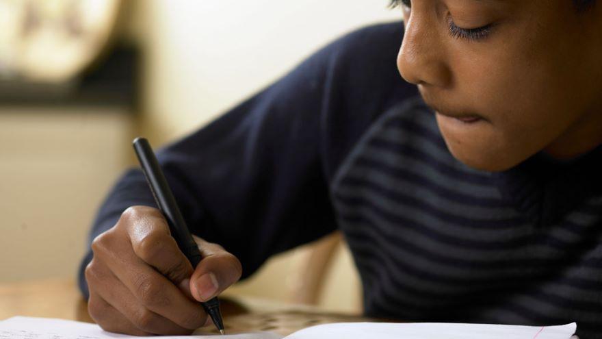 Parent as Teacher-Homework and Beyond