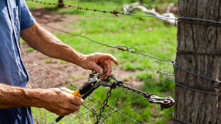 Fencing for Livestock and Gardens