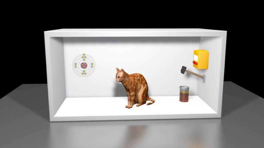 Bell's Theorem and Schrödinger's Cat